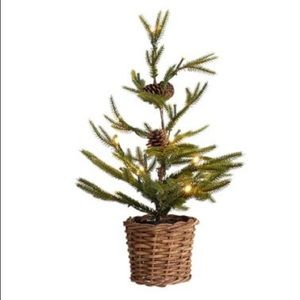 New Pottery Barn lit pine tree small Christmas